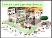 Get Reliable Residential Pest Control Solution for Your Home