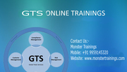 SAP GTS Online Training Classes
