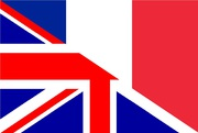 Professional French translator