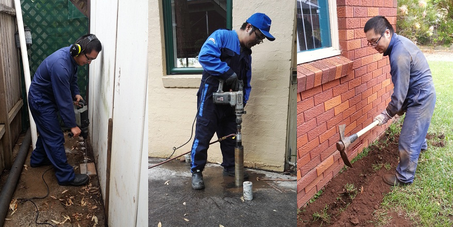 Pest Control Service in Eastwood,  Ryde & Sydney - Leading Pest Control