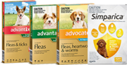 Buy Dog Supplies,  Dog Foods and Accessories at Low Prices