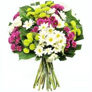 Royal North Shore Hospital Florist