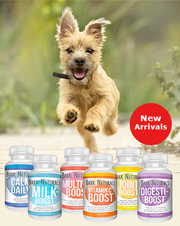 Buy Dog Bark Naturals Dog Treats