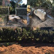 Quality Tree Stump Removal Service in Sydney by Professionals