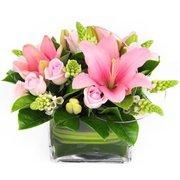 Best Online Florist in Sutherland  -  Hospital Florist