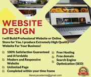 I will Build Professional Website or Online Store for You.