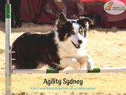 Agility Sydney