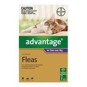 Flea and Tick control - Advantage for Cats