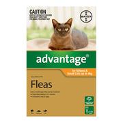 Flea and Tick control - Advantage for Small Cats
