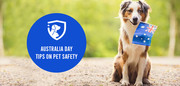 Australia Day: Tips on Pet Safety