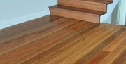 How To Choose A Timber Species For Your Floor