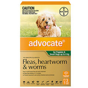 Advocate For Dogs and Cats