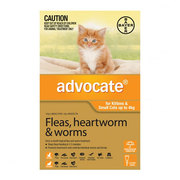 Buy advocates for your dogs and cats from Vetsupply