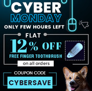 Cyber Monday Sale: Flat 12% OFF On all Orders