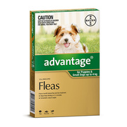 Buy Advantage For Small Dogs 4 Kg Green Pack | Low Prices