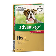 Buy Advantage For Large Dogs 10-25KG 6 Pack Red   DiscountPetCare