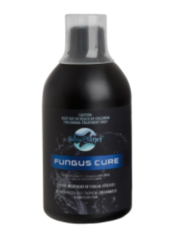 Buy Blue Planet Fungus Cure for Fish  Antibiotics  Online