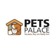 Buy Premium Dog and Puppy Accessories