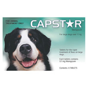 Capstar For Large Dogs | Flea & Tick Treatment | DiscountPetCare
