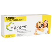 Buy Valuheart Heartworm for Large Dogs 21 to 40kg Gold Pack|Pets Worm