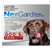 Nexgard Chewables For Dogs 25-50Kg Red | DiscountPetCare