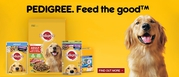 Buy Pedigree Healthy and Nutritous Food for Dogs|Pet Supplies