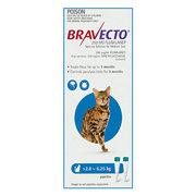 Buy Bravecto Spot On for Medium Cats 2.8 to 6.25kg Blue|Flea,  Ticks